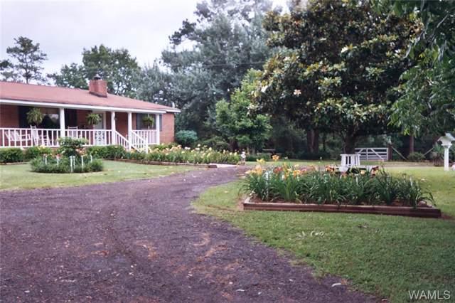 13956 Doyle Beams Rd, COTTONDALE, AL 35453 (MLS #135009) :: The Gray Group at Keller Williams Realty Tuscaloosa