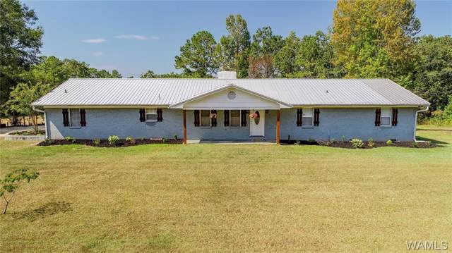 16670 Gainsville Road, RALPH, AL 35480 (MLS #135194) :: The Alice Maxwell Team