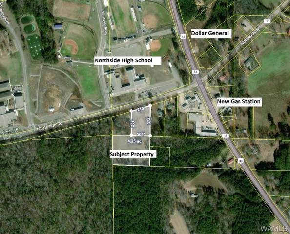 00 Hwy 43 N, NORTHPORT, AL 35475 (MLS #135623) :: Hamner Real Estate