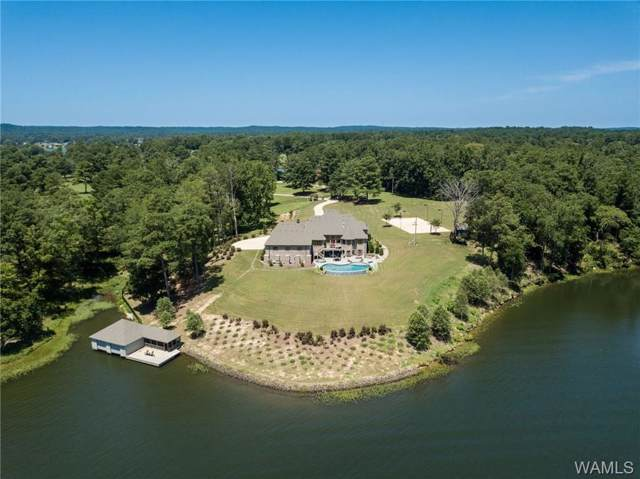 15139 Waters Edge Drive, NORTHPORT, AL 35475 (MLS #135801) :: The Alice Maxwell Team