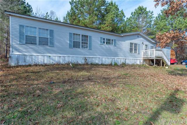 15225 Autumn Ridge Road, FOSTERS, AL 35463 (MLS #136170) :: The Gray Group at Keller Williams Realty Tuscaloosa