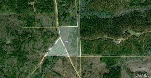 000 Mallard Road, KENNEDY, AL 35574 (MLS #136222) :: The Gray Group at Keller Williams Realty Tuscaloosa