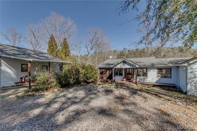17194 Searcy Road, NORTHPORT, AL 35475 (MLS #136974) :: The Alice Maxwell Team