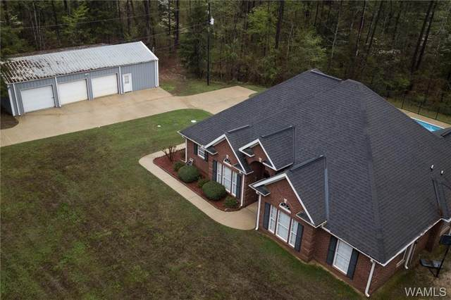 16849 Pine Island Road, NORTHPORT, AL 35475 (MLS #137528) :: The Advantage Realty Group