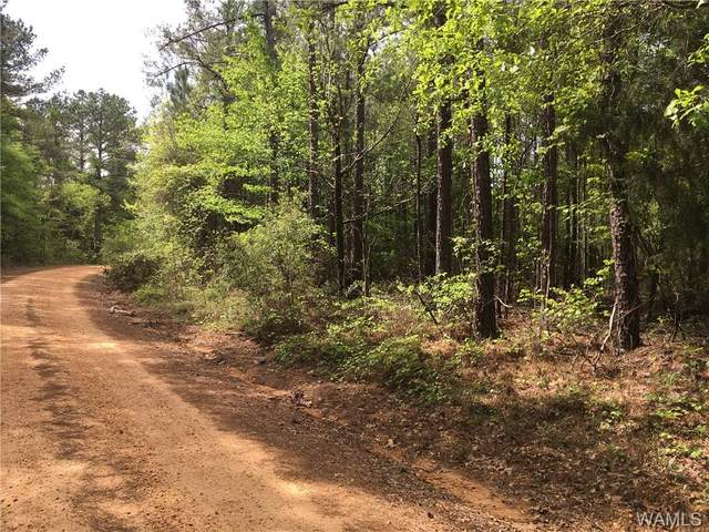 0 Little Rock Church Road, MARION, AL 36756 (MLS #137552) :: The Gray Group at Keller Williams Realty Tuscaloosa