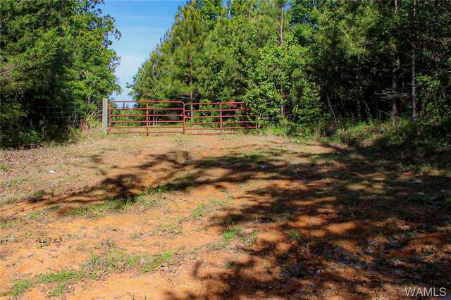 0 Mt Ivah Church Rd, MARION, AL 35034 (MLS #138085) :: The Alice Maxwell Team