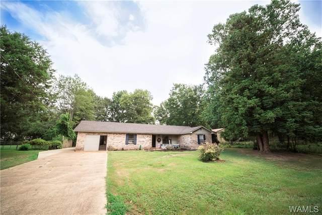 205 Beech Avenue, WINFIELD, AL 35594 (MLS #139479) :: The Gray Group at Keller Williams Realty Tuscaloosa