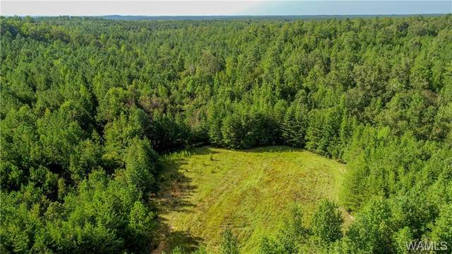 0 Evanstown Road, BERRY, AL 35546 (MLS #139894) :: The Advantage Realty Group