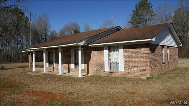 189 Hinton Place Drive, ALICEVILLE, AL 35442 (MLS #141108) :: Caitlin Tubbs with Hamner Real Estate