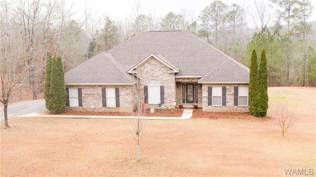 11746 Joe Namath Road, NORTHPORT, AL 35475 (MLS #141906) :: The Alice Maxwell Team