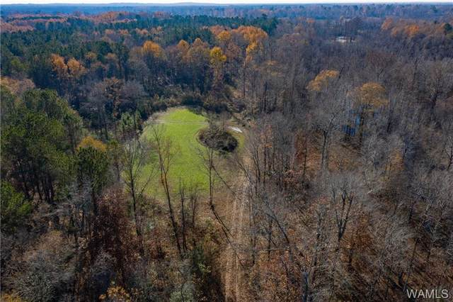 Lots 163 & 138 Black Warrior Bay, HALE, AL 35441 (MLS #141931) :: The Advantage Realty Group
