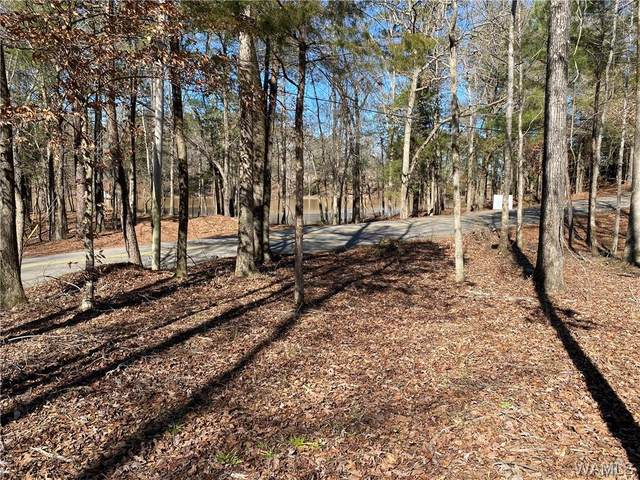 4 Holly Springs Road, NORTHPORT, AL 35475 (MLS #142092) :: Caitlin Tubbs with Hamner Real Estate