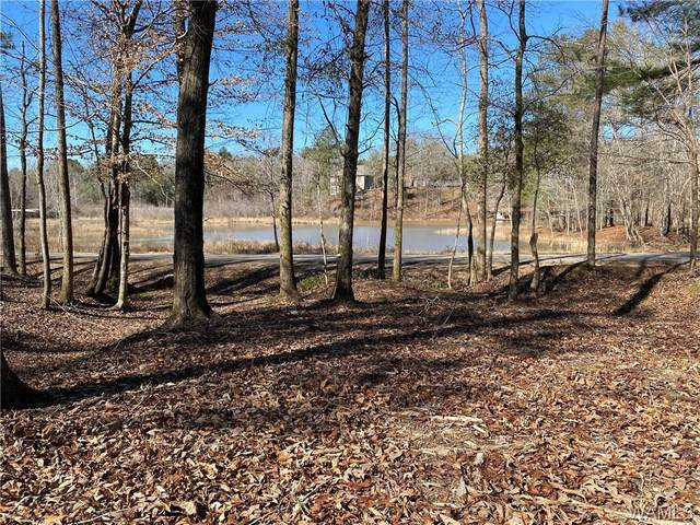 6 Holly Springs Road, NORTHPORT, AL 35475 (MLS #142095) :: The Advantage Realty Group