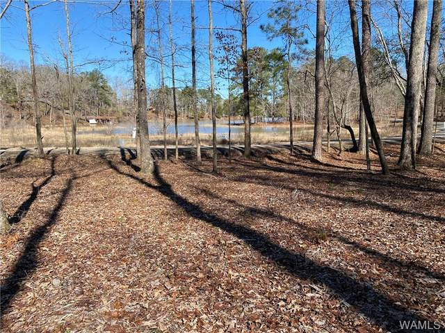 9 Holly Springs Road, NORTHPORT, AL 35475 (MLS #142098) :: The Advantage Realty Group