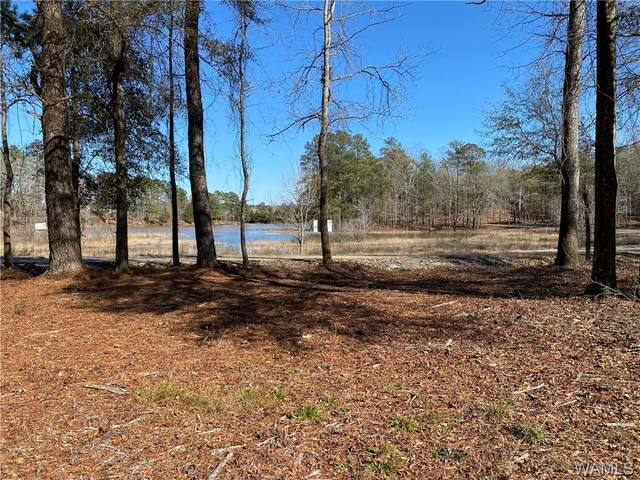 10 Holly Springs Road, NORTHPORT, AL 35475 (MLS #142100) :: Caitlin Tubbs with Hamner Real Estate