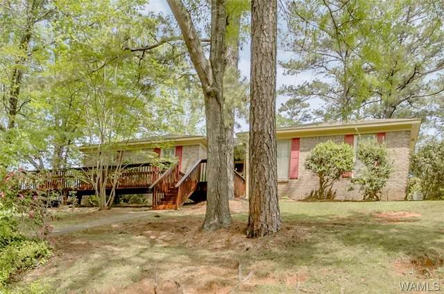 708 Greystone Street, NORTHPORT, AL 35473 (MLS #143464) :: Caitlin Tubbs with Hamner Real Estate