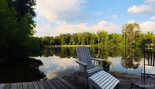 4505 Lakeview Estates Drive, NORTHPORT, AL 35473 (MLS #145058) :: The K|W Group
