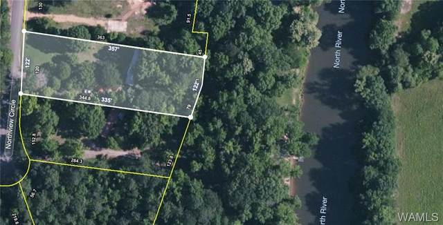18041 Northview Circle, NORTHPORT, AL 35475 (MLS #145488) :: The Advantage Realty Group