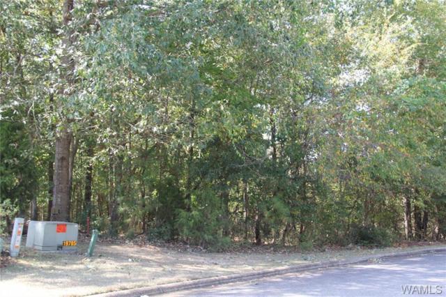 15 Carmel Bay Drive #15, NORTHPORT, AL 35475 (MLS #104530) :: The Advantage Realty Group