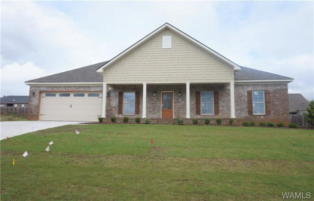 13865 Darden Avenue, NORTHPORT, AL 35475 (MLS #125609) :: The Gray Group at Keller Williams Realty Tuscaloosa