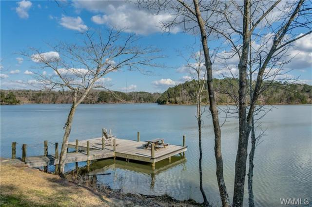 10644 Legacy Point #25, NORTHPORT, AL 35475 (MLS #125834) :: Alabama Realty Experts