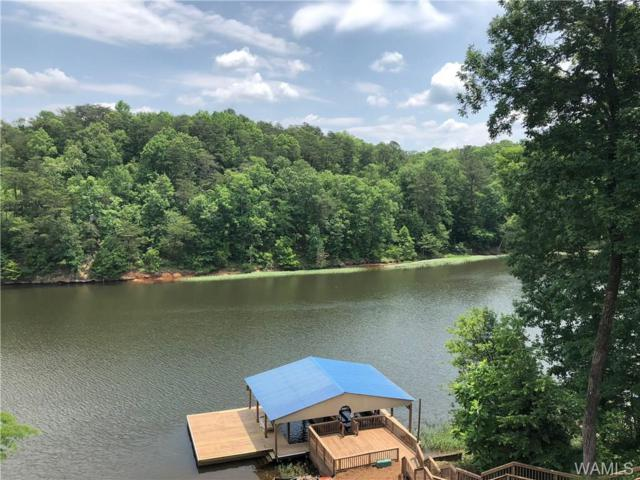 17130 Searcy Road, NORTHPORT, AL 35475 (MLS #127195) :: The Advantage Realty Group