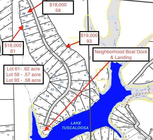 Lot 61 Lake Hills Drive, NORTHPORT, AL 35475 (MLS #127515) :: The Alice Maxwell Team