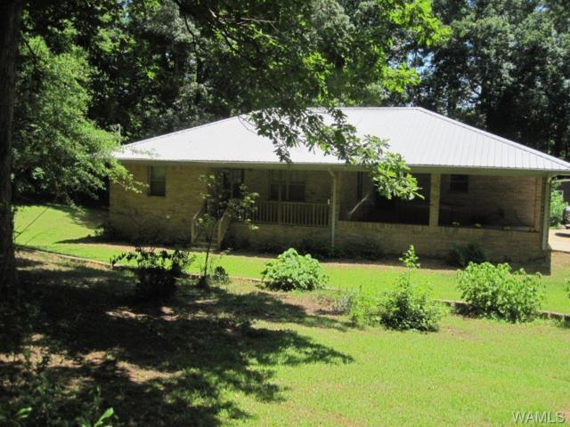 11426 Mt. Vernon Drive, DUNCANVILLE, AL 35456 (MLS #127555) :: The Advantage Realty Group