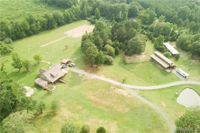 10287 Benevola Road, GORDO, AL 35466 (MLS #128618) :: The Advantage Realty Group