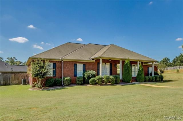 13931 Willow View Lane, NORTHPORT, AL 35475 (MLS #130152) :: Hamner Real Estate