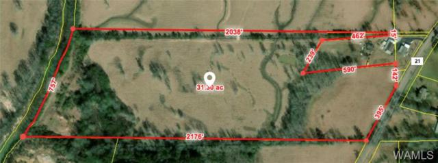0 County Road 21, FAYETTE, AL 35555 (MLS #130276) :: The Advantage Realty Group