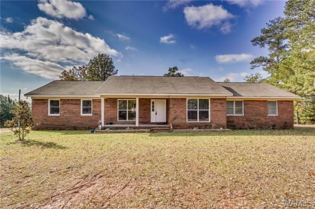 14341 County Rd 32, AKRON, AL 35441 (MLS #130747) :: The Advantage Realty Group