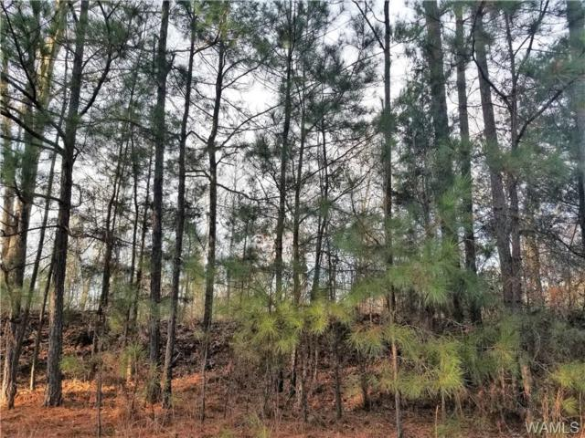 0 Gordo Road, FAYETTE, AL 35574 (MLS #130999) :: The Advantage Realty Group