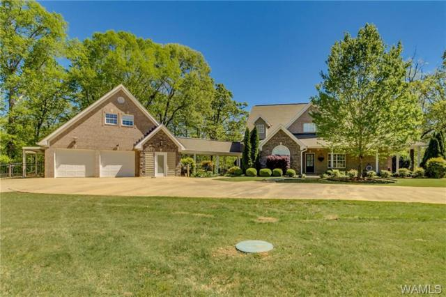 15375 Freemans Bend Road, NORTHPORT, AL 35475 (MLS #131309) :: Hamner Real Estate