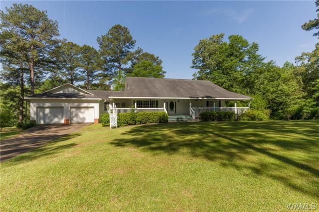 17080 Hayes Road, NORTHPORT, AL 35475 (MLS #132459) :: The Advantage Realty Group