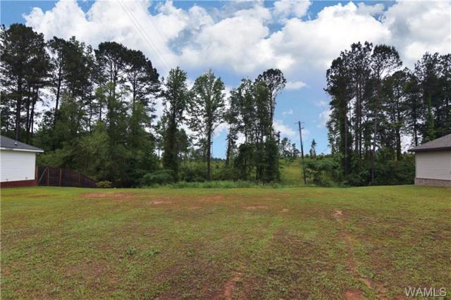 15547 Don Anderson Parkway, BROOKWOOD, AL 35444 (MLS #133177) :: The Advantage Realty Group