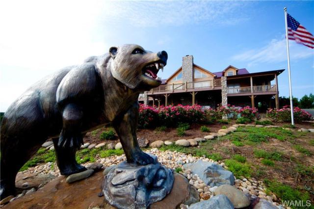 1420 Canaan Road, FAYETTE, AL 35555 (MLS #133324) :: The Gray Group at Keller Williams Realty Tuscaloosa