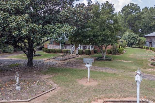 13956 Doyle Beams Rd, COTTONDALE, AL 35453 (MLS #135009) :: The Advantage Realty Group