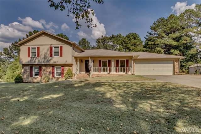 15425 Bridgeview Drive, NORTHPORT, AL 35475 (MLS #135265) :: The Advantage Realty Group