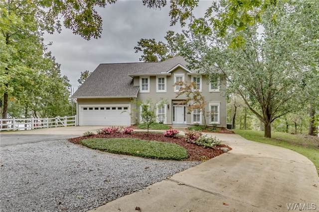 16057 Carmel Bay Drive, NORTHPORT, AL 35476 (MLS #135581) :: The Alice Maxwell Team