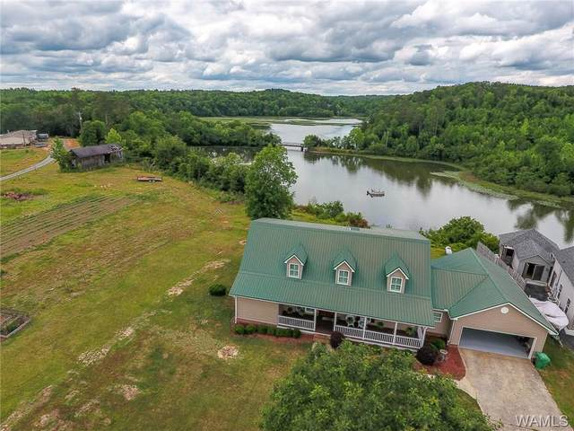 17068 Searcy Road, NORTHPORT, AL 35475 (MLS #138145) :: The Alice Maxwell Team