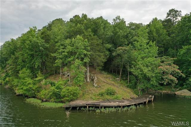 11760 High Cliff Drive, NORTHPORT, AL 35475 (MLS #138735) :: The Advantage Realty Group