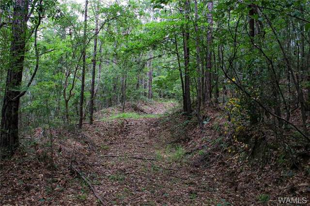 0 County Road 44, LINDEN, AL 36748 (MLS #139040) :: The Advantage Realty Group