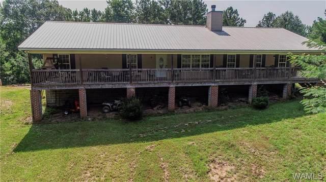 15192 Shangri La Road, DUNCANVILLE, AL 35456 (MLS #144969) :: The Gray Group at Keller Williams Realty Tuscaloosa