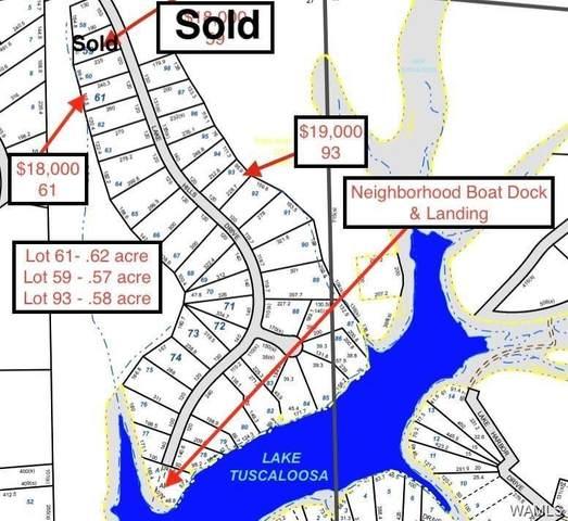 Lot 61 Lake Hills Drive, NORTHPORT, AL 35475 (MLS #127515) :: The Advantage Realty Group