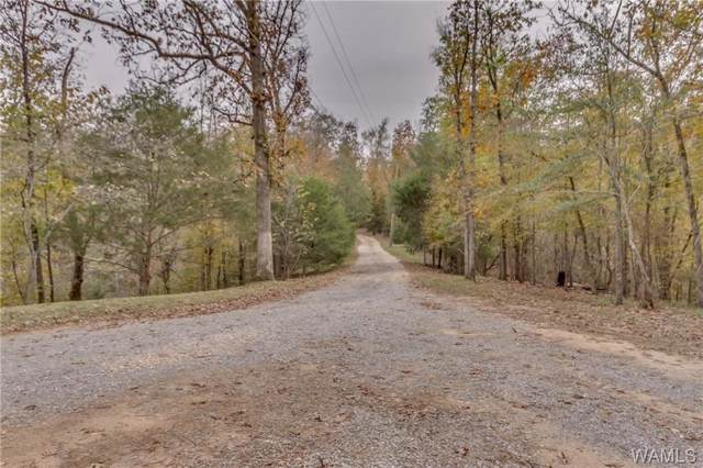 13750 Frierson Lane, COTTONDALE, AL 35453 (MLS #135758) :: The Gray Group at Keller Williams Realty Tuscaloosa