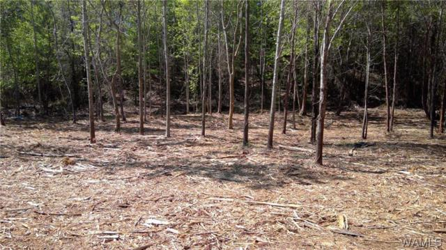 81 Woodland Forrest #81, TUSCALOOSA, AL 35405 (MLS #107532) :: The Advantage Realty Group