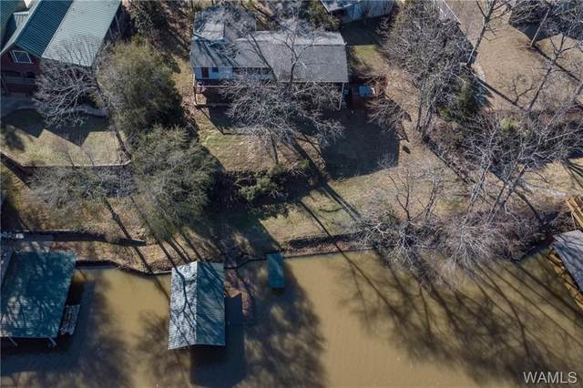 17194 Searcy Road, NORTHPORT, AL 35475 (MLS #136974) :: The Advantage Realty Group
