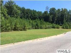 10 Silver Maple Drive #10, NORTHPORT, AL 35473 (MLS #120795) :: The Advantage Realty Group