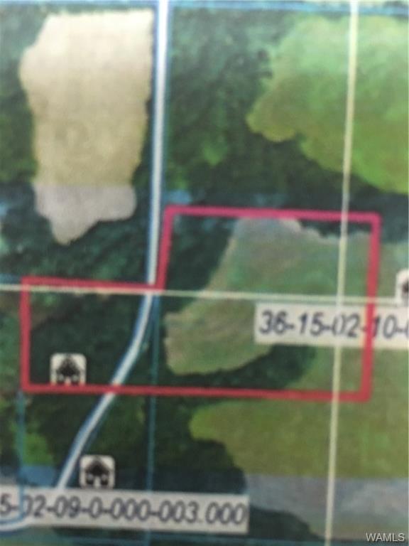 00 Pintail Drive, SAWYERVILLE, AL 36776 (MLS #122198) :: The Gray Group at Keller Williams Realty Tuscaloosa